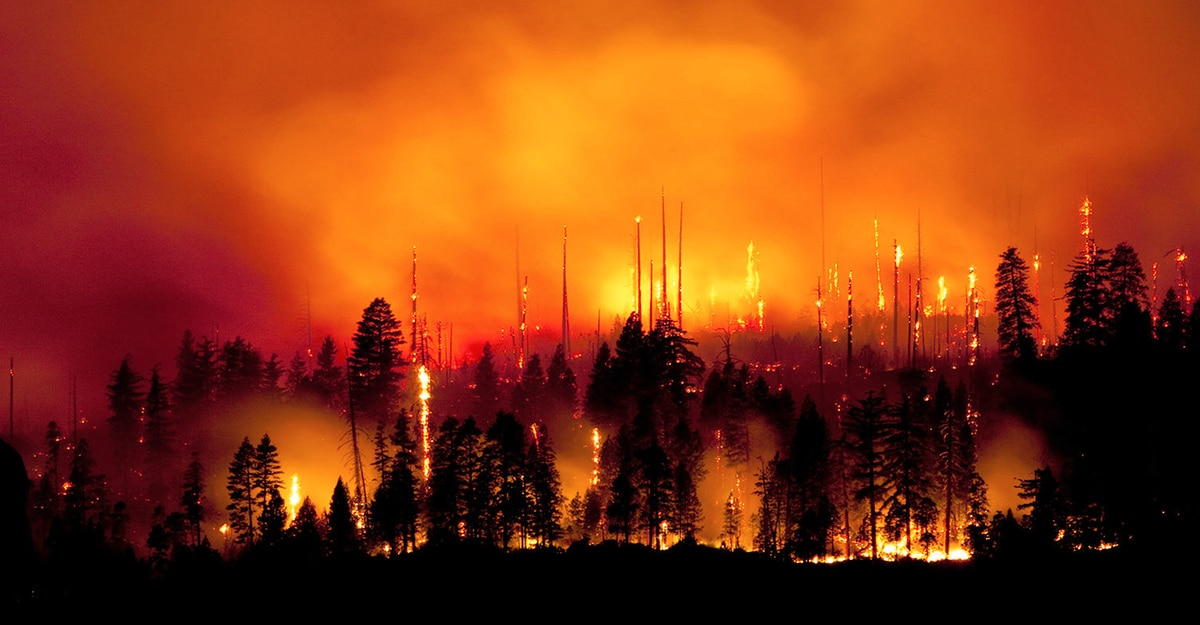 DriveSavers Offers Data Recovery Relief To Victims Of Raging California Wildfires