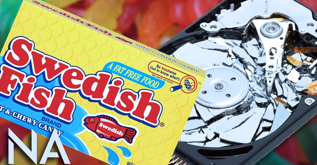 , Vice Motherboard: Uncovering The Truth Behind The Swedish Fish Theory
