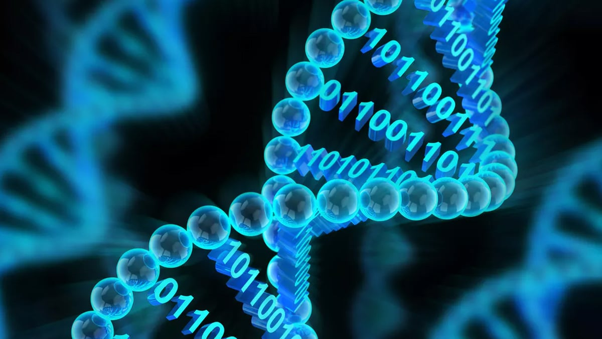 Growing Data: DNA Data Storage