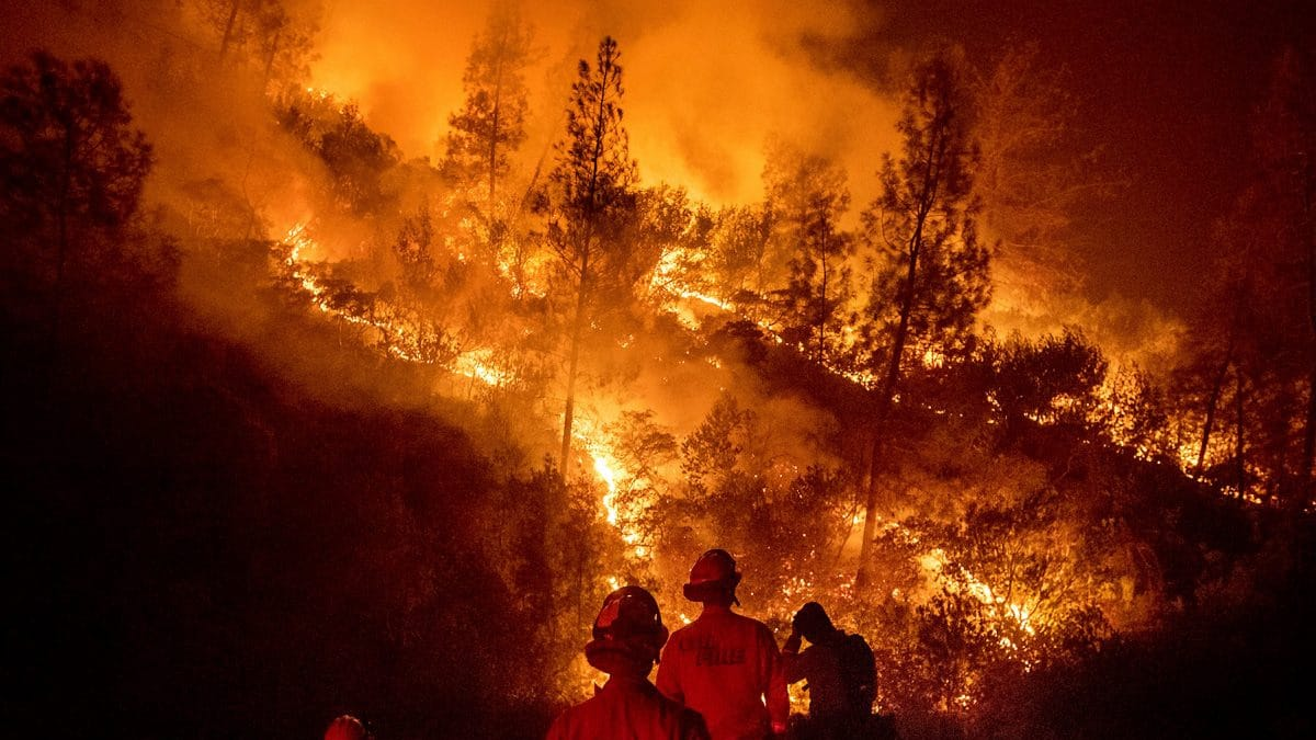 Data Tips For Wildfire Season